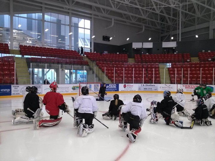 The Importance of Quality Goaltending Coaching and Certification in Minor Hockey